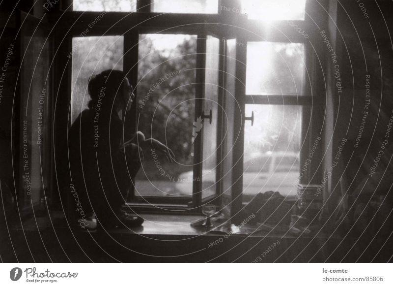 zora Window board Think Summer Sunbeam Sunglasses Trust Black & white photo