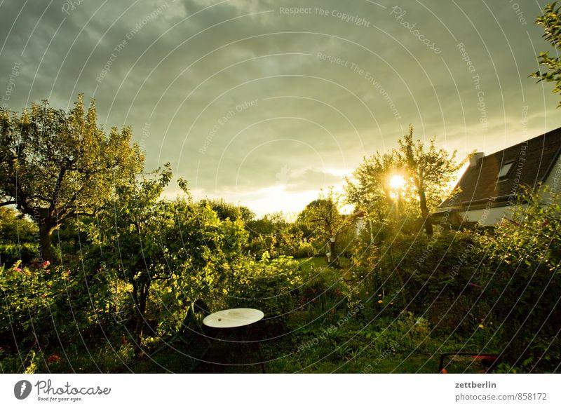 western world Garden Thunder and lightning Sky Garden plot Garden allotments Sun Sunbeam Sunset Weather Clouds Cloud cover Low pressure zone Neighbor
