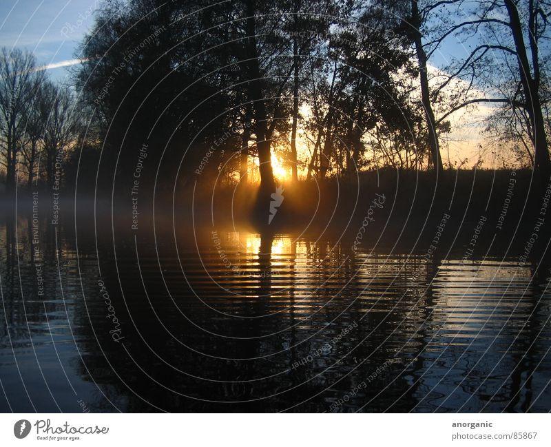 the_spree Sunset Spree Kayak Still Life River Brook Evening Water Vacation & Travel