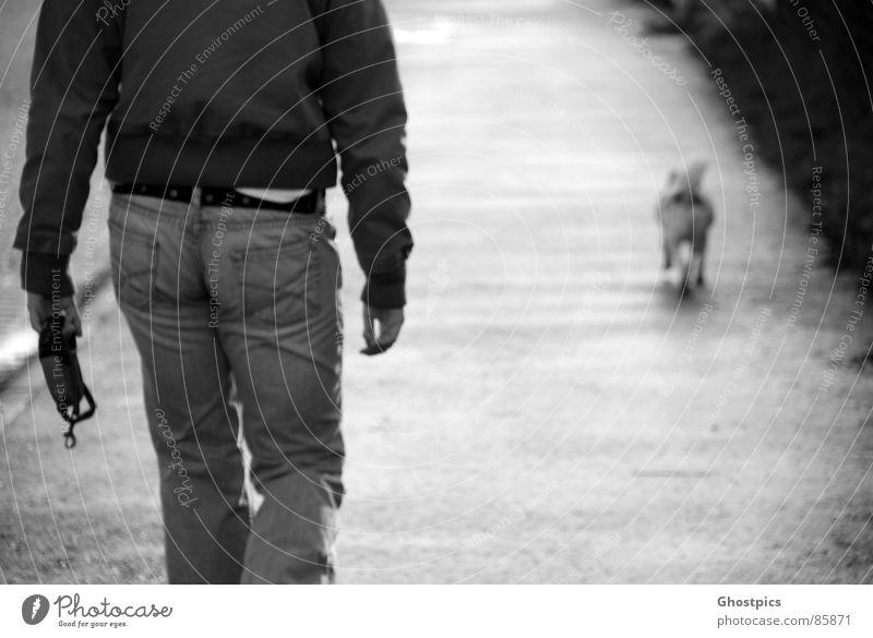 Follow the Dog Going Woman Ace Trust Black & white photo Animal walk Walking Backwards
