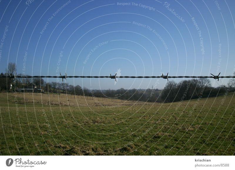 divided landscape Barbed wire Landscape