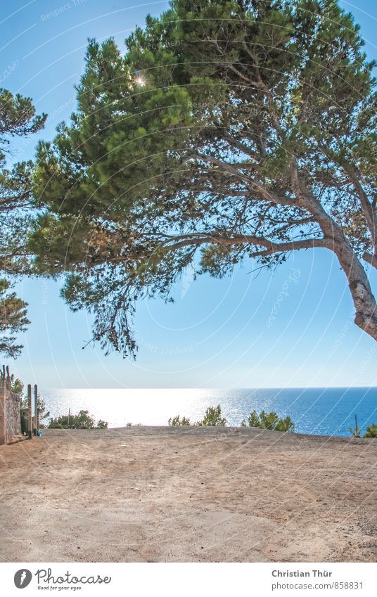 sea view Spain Mallorca Well-being Contentment Relaxation Swimming & Bathing Tourism Trip Far-off places Freedom Summer vacation Sun Ocean Aquatics Hiking