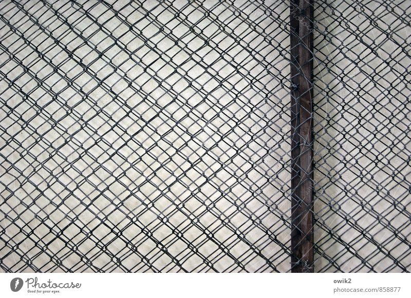 landline Wire netting fence Reticular Net Network Narrow Firm tight Plaited wickerwork Metalware Wood Rod Frame Part Near Protection Equal Complex Superimposed