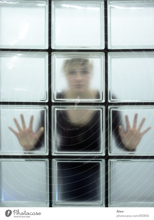 iced Cold Window Looking Hand Woman Square Rectangle flash-freeze peep through lydia Net Wait