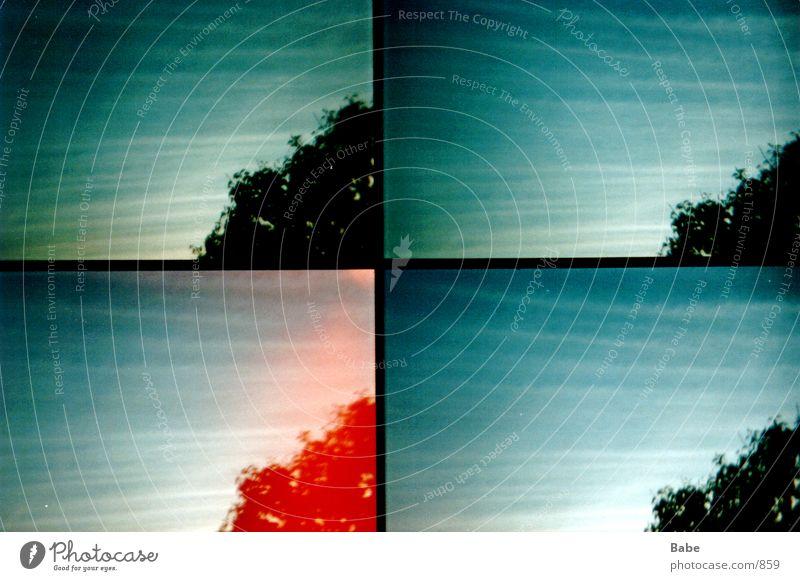 from window 2 Window Clouds Tree Lomography