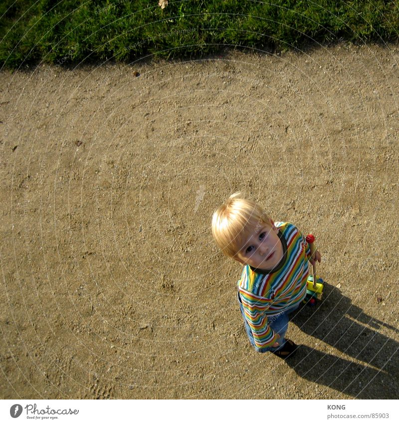 Child Meadow Above Boy (child) Grass Blonde Stripe Communicate Curiosity Lawn Toddler Discover Sunbathing Striped Interest Bangs