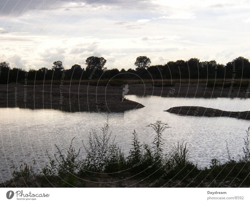 Water Tree Clouds Dark Lake