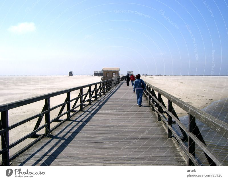 No water by the sea Lake Ocean Footbridge St. Peter-Ording Beige Coast Sandbank Multiple Sea level Beach Germany Earth Water Mud flats Maximum Many on the coast