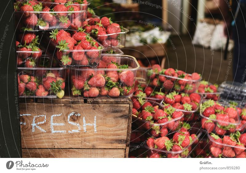 strawberry season Food Fruit Nutrition Market stall Trade Gastronomy Spring Strawberry Box Shopping Sell Fresh Healthy Delicious Brown Red Colour photo