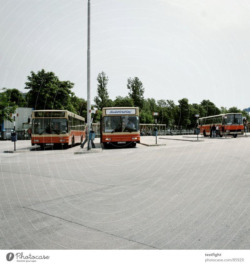 bus stop Bus stop Tar Asphalt Vehicle Driving In transit South Mediterranean Homesickness Wanderlust Loneliness Town Doomed Train station