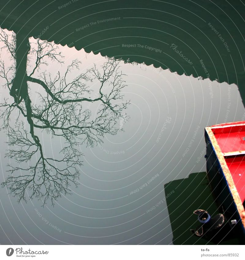 Tree Boat Watercraft Mirror Inverted Venice River Brook Sky Detail Part Difference