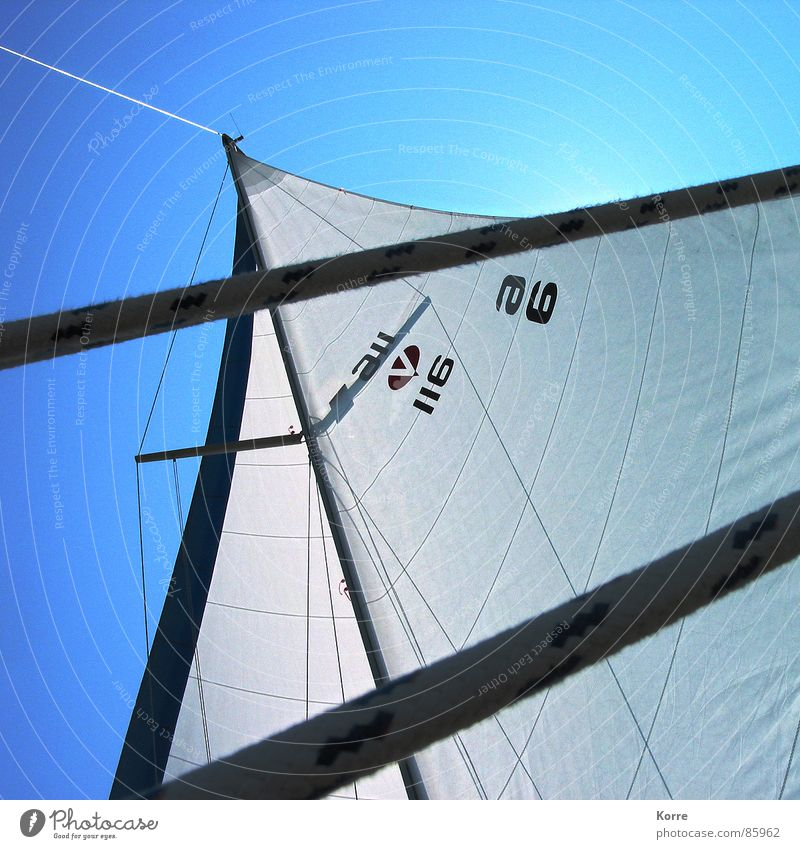 Summer on the lake Colour photo Exterior shot Deserted Day Shadow Contrast Sunlight Back-light Worm's-eye view Playing Cruise Ocean Sports Sailing Rope