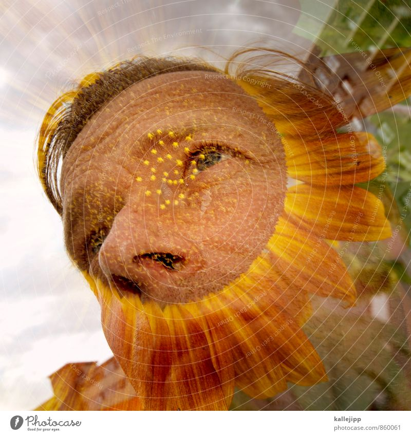like this nen´bart Human being Masculine Face 1 30 - 45 years Adults Environment Nature Plant Flower Garden Blossoming Sunflower Facial hair Double exposure