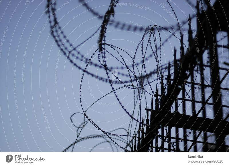 security fence Fence Barbed wire Israel Confine Exclude Detail Protection Gaza West Bank palaestine