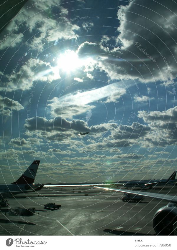 departure Airplane Light Engines Horizon Far-off places Arrival Aviation Sun Sky Airport Runway Control desk Wing