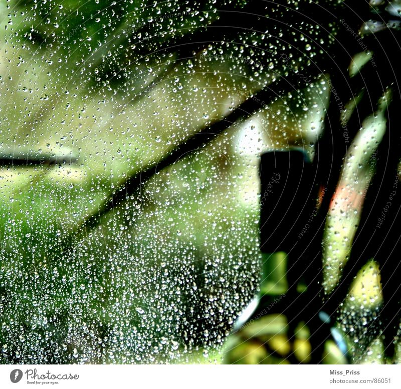 Drops in green Bottle of wine Green Still Life Decent Grief Hope Unclear Indefinite Beautiful Rain Sadness