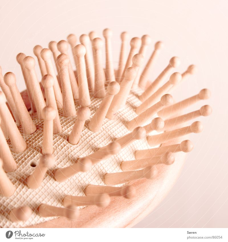 Beautiful Relaxation Warmth Leisure and hobbies Wellness Physics Well-being Massage Brush Comb Burl Hairdressing