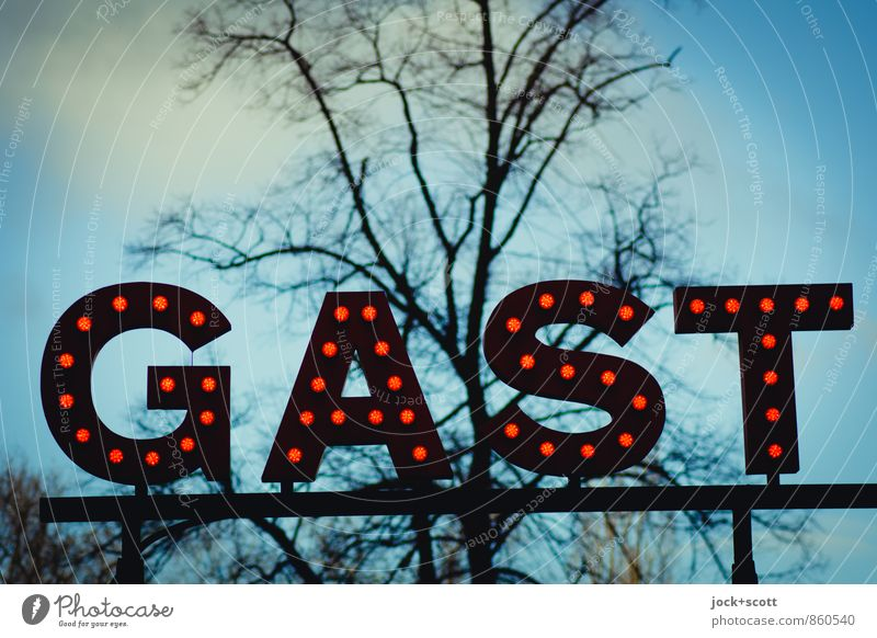 your guest Gastronomy Word Typography Cloudless sky spring tree Prenzlauer Berg Illuminant Illuminate Friendliness Retro Reliability Moody Safety (feeling of)