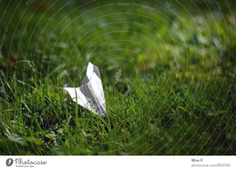 Music is in the air / Meadow Handicraft Children's game Musical notes Grass Flying Sheet music Symbols and metaphors Paper plane Origami Crash landing
