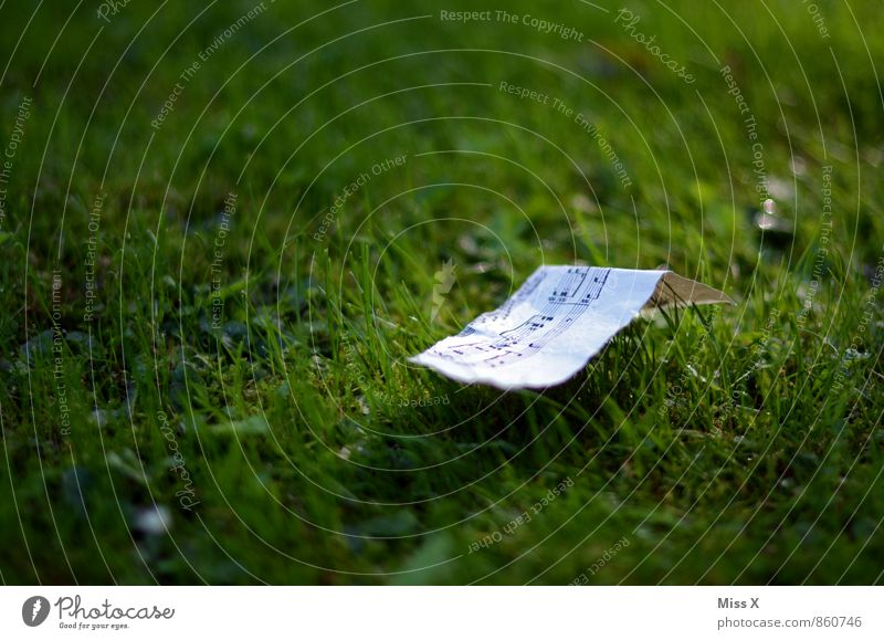 a soft love song Music Musical notes Grass Meadow Paper Sign Emotions Moody Love Infatuation Dream Longing Song Sheet music Ease Colour photo Exterior shot
