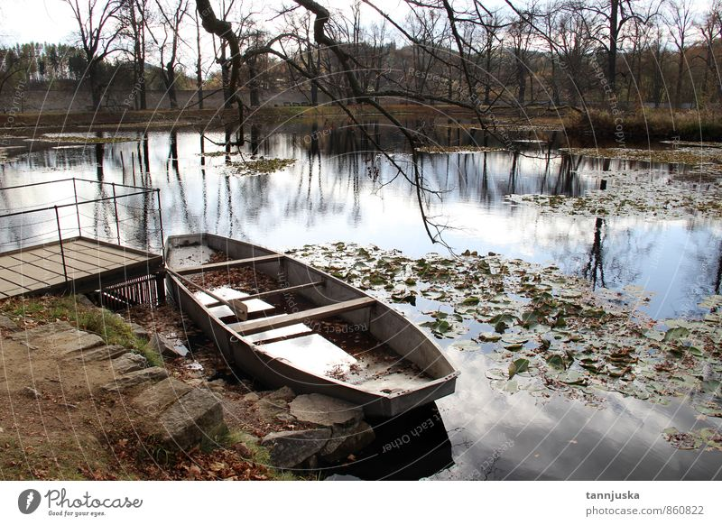 Boat and pond in the autumn forest Beautiful Nature Autumn Weather Tree Leaf Park Forest Pond Lake River Watercraft Bright Yellow Gold Green Romance Colour fall