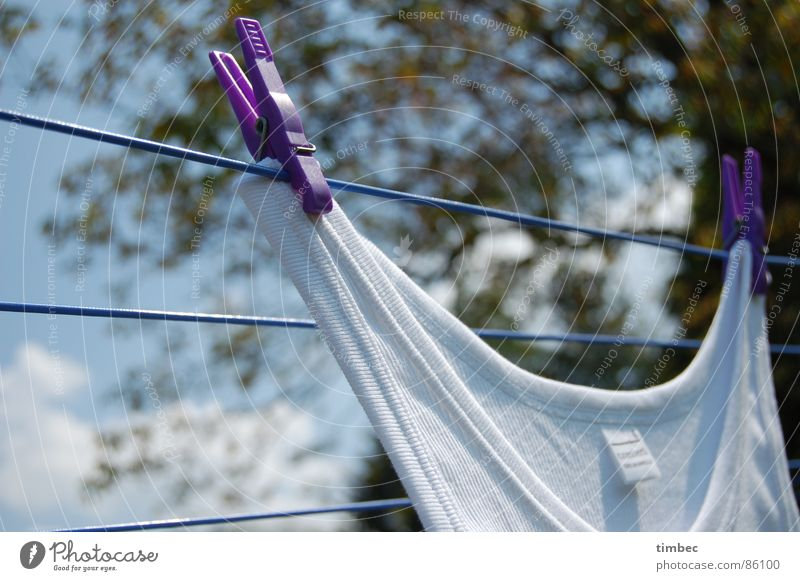 Grandpa's best Loop Rutting season Knit Pattern Textiles Production Laundry Clothesline Summer Physics Clean Cleaning Undershirt Clothes peg Holder Violet