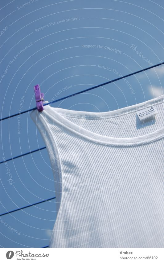 Sky Summer White Warmth Garden Line Perspective Clothing Rope Clean Cleaning Violet Physics Under Craft (trade) Washing