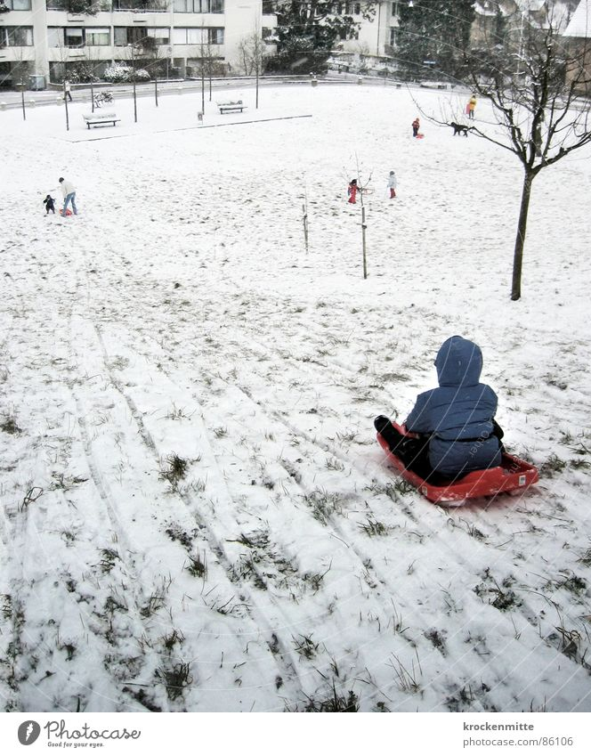 on the hill of idiots Sledding Suburb Child Cold Toddler Joy Winter Playing ski jacket idiot mound Snow Tracks Boy (child) lack of snow Winter clothing
