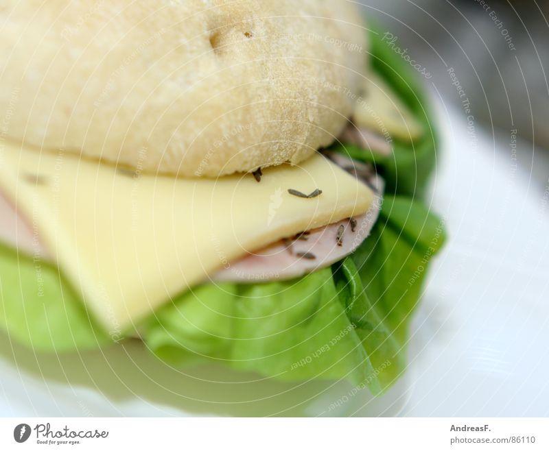Flaguette II Cumin Bread Roll Baguette Sandwich Breakfast Fresh Filling Salad leaf Ham Sausage sandwich Meal White bread Bagel Lunch Gastronomy Kitchen