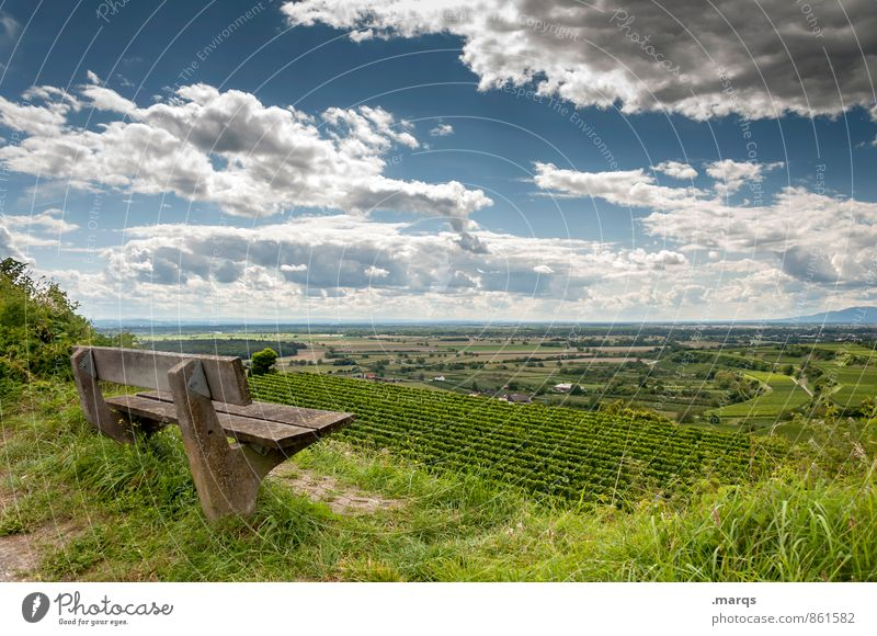 emperor's bank Tourism Trip Hiking Environment Nature Landscape Sky Clouds Horizon Summer Beautiful weather Plant Field Wine growing Bench Relaxation To enjoy
