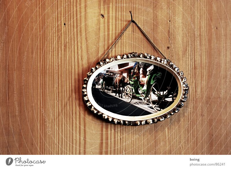 Vacation & Travel Joy Art Leisure and hobbies Photography Wait Trip Stand Horse Crockery Austria Vienna Picture frame Arts and crafts  Wall panelling Horse-drawn carriage