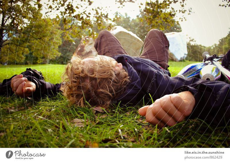 Nature Youth (Young adults) Man Summer Tree Relaxation Hand Calm 18 - 30 years Young man Adults Life Autumn Grass Lie Park