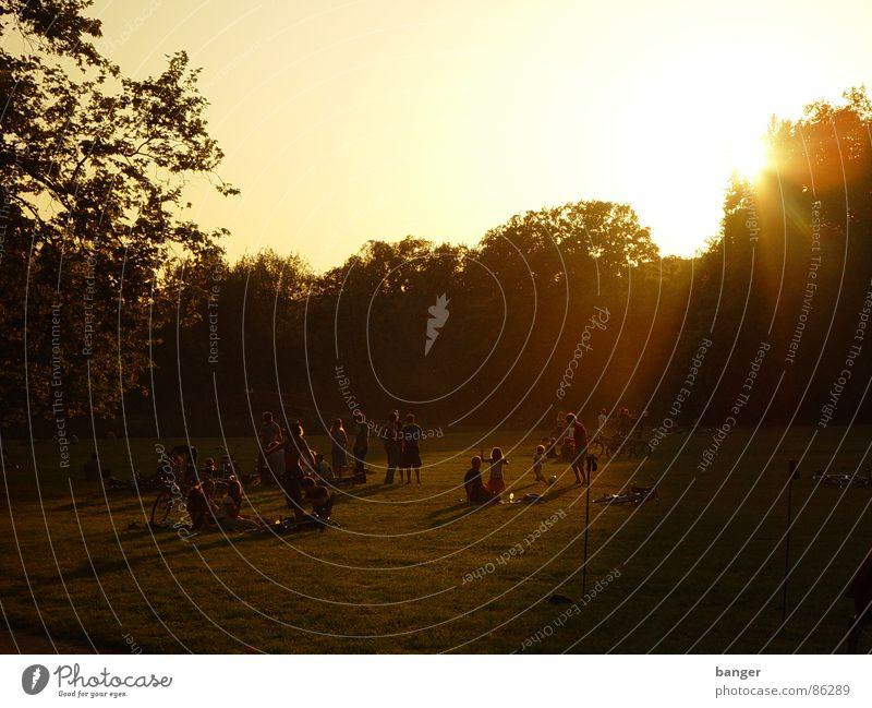 Sun Summer Meadow Group Park Leisure and hobbies Multiple Dusk Public Holiday Closing time Evening sun Recreation area