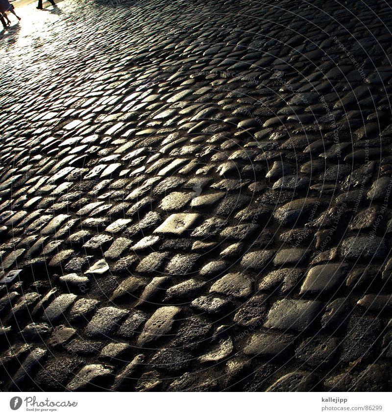 Human being Street Footwear Going Walking To go for a walk Asphalt Pavement Cobblestones Sunbathing Craftsperson Crawl Working man Reunification