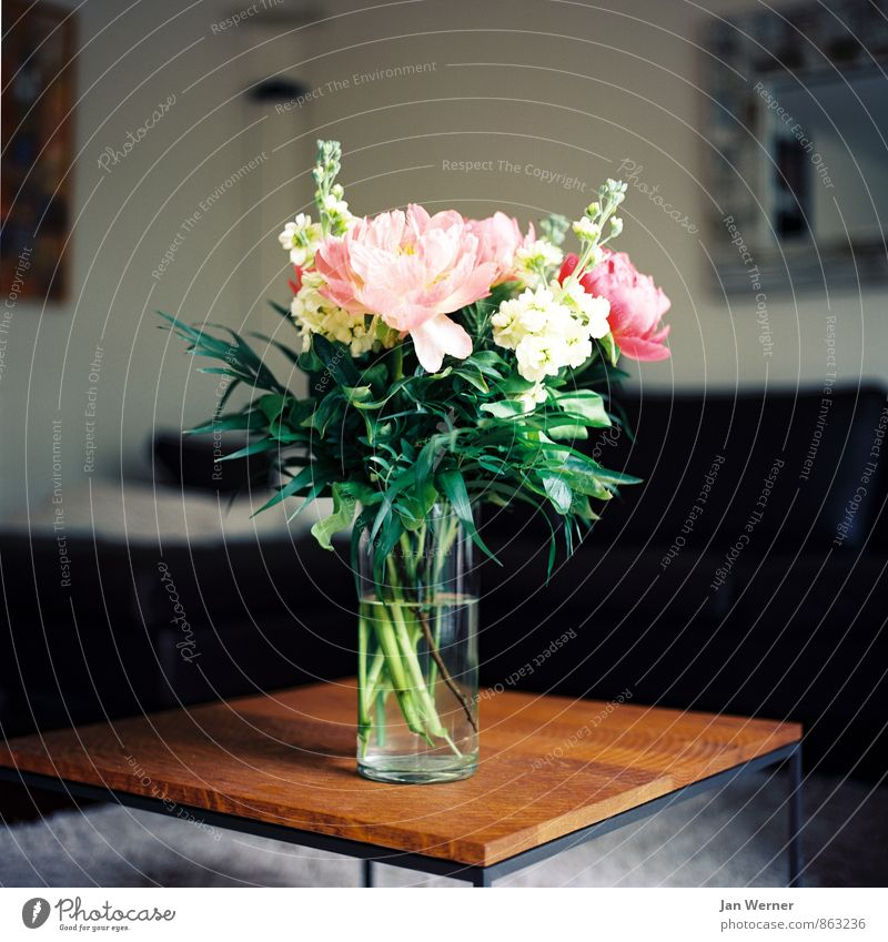 flowers Lifestyle Style Harmonious Well-being Contentment Living or residing Flat (apartment) Furniture Table Room Living room Valentine's Day Mother's Day