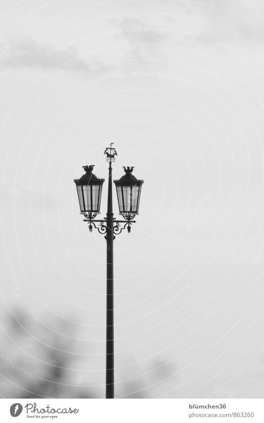 Lantern with charm Lighting Lamp Street lighting Lamp post Illuminate Stand Historic Black White Moody Emotions Romance Town Vacation & Travel Lisbon Portugal