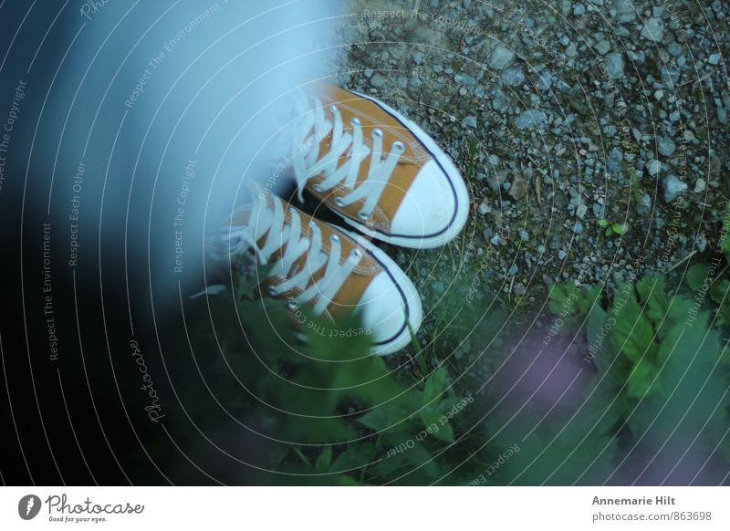 favorite shoes Footwear Sneakers Hiking Forest walk Chucks Orange Shoelace forest path Colour photo Exterior shot Copy Space left Copy Space right