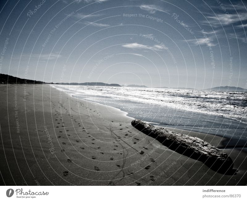 for a better tomorrow Beach Sky Italy Ocean Water sea waves tree landscape Sand blue clouds