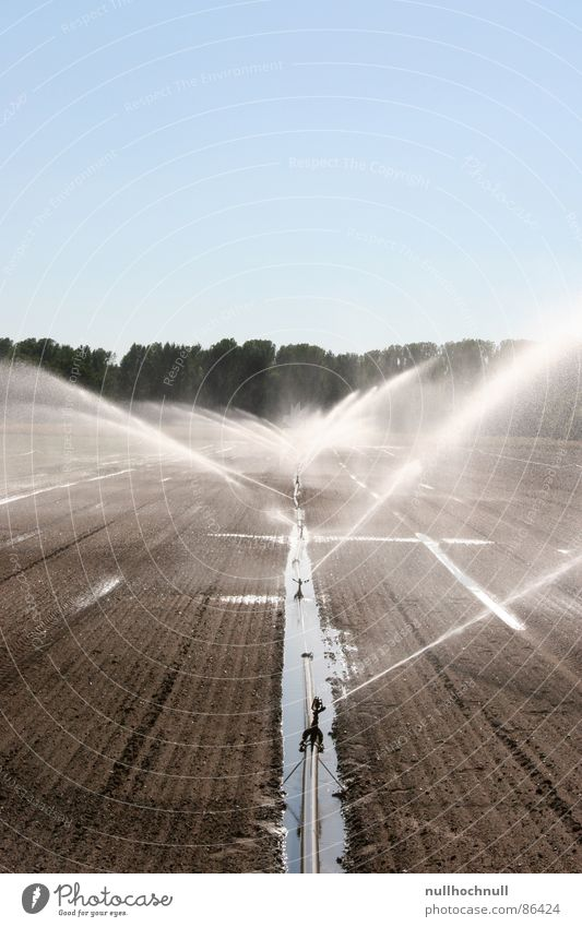 Water Sky Cold Field Wet Agriculture Pipe Damp Beautiful weather Cast Water pipe Edge of the forest Arable land Irrigation