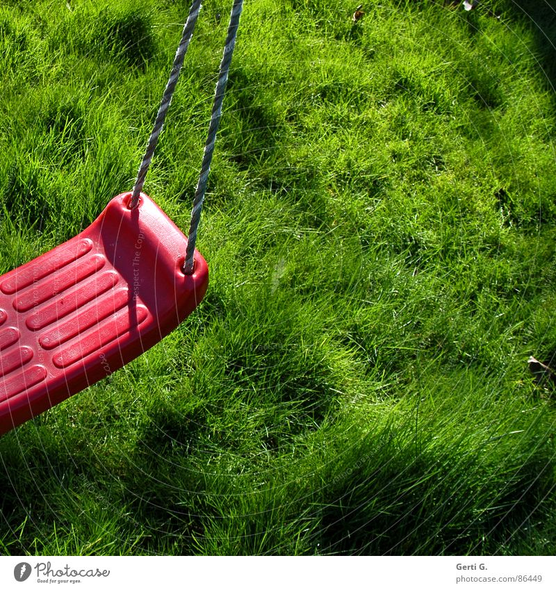 Piece swing Blade of grass Bright Sunlight Floodlight Summer Green Bilious green Square Grass Meadow Lawn for sunbathing Fresh Juicy Swing Red String Hold
