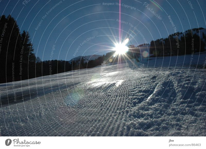 backlight Artificial snow Frozen surface Fresh Morning Edge Light Back-light Sunrise Fir tree Forest Beautiful Winter sports unprocessed the first slope edge