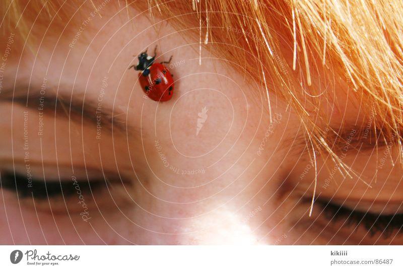 Sun Red Summer Joy Black Eyes Spring Hair and hairstyles Friendship Brown Blonde Point Self portrait Ladybird Crawl Bangs