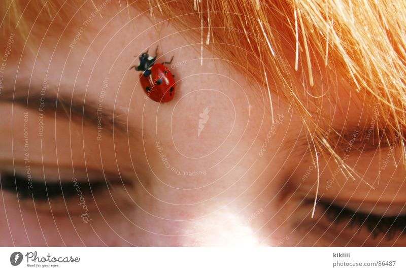 Sun Red Summer Joy Black Eyes Spring Hair and hairstyles Friendship Brown Blonde Point Self portrait Ladybird Crawl Bangs
