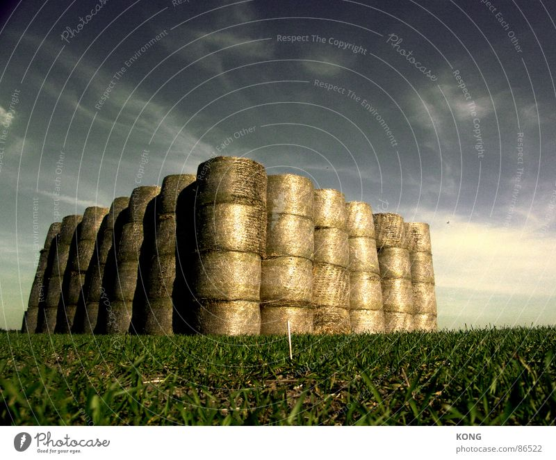 straw castle Bulky Defensive Straw Bale of straw Meadow Field Sky blue Middle Clouds Green Large Agriculture Common land Supply Storage Keep Roll of straw