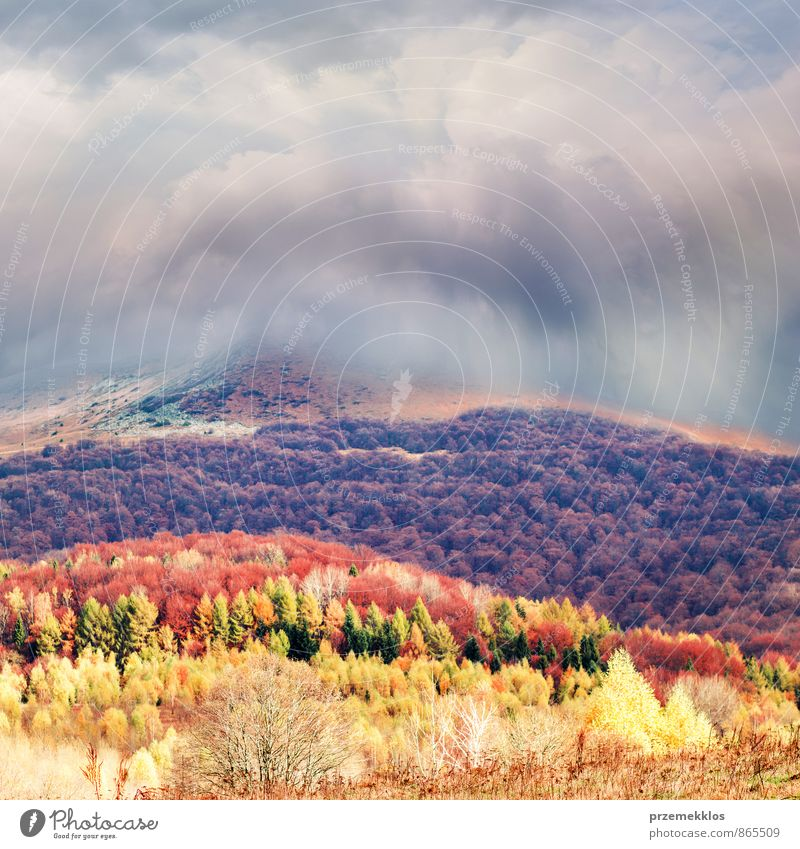 Storm clouds over mountains hill Freedom Mountain Nature Landscape Clouds Autumn Tree Grass Park Meadow Forest Hill Brown Multicoloured Yellow Red background