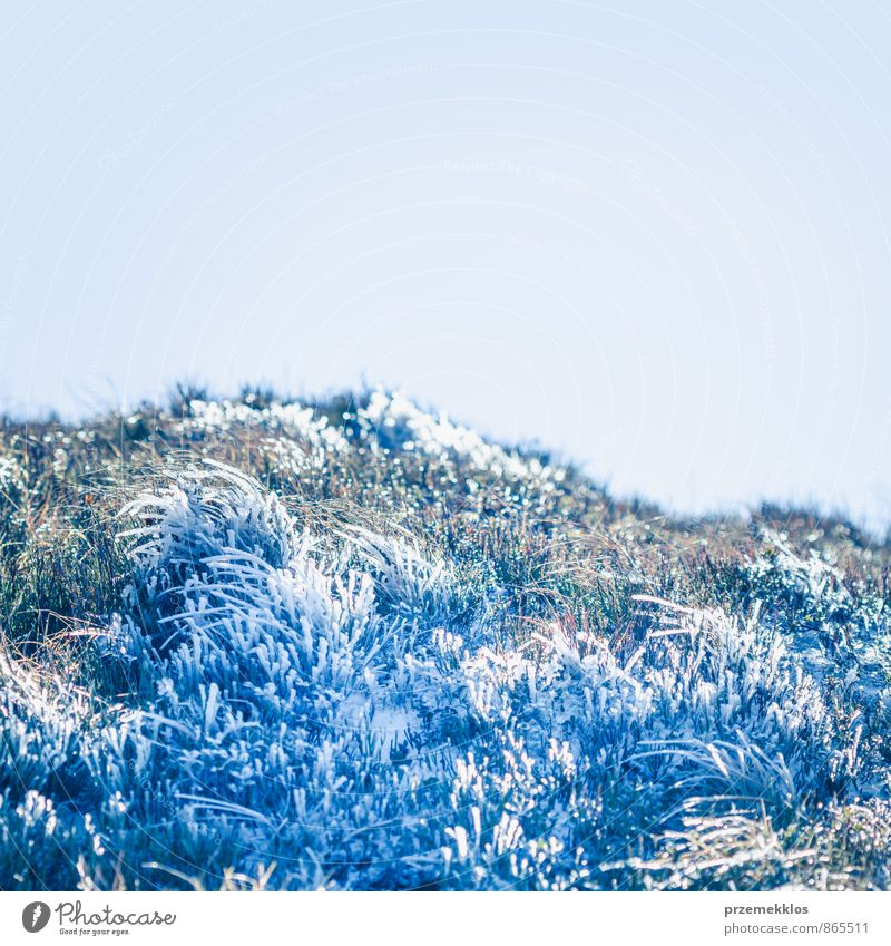 Frozen grass on autumn day in the mountains Sky Nature Blue Plant Beautiful Landscape Winter Mountain Meadow Autumn Grass Snow Freedom Park Vantage point Clean