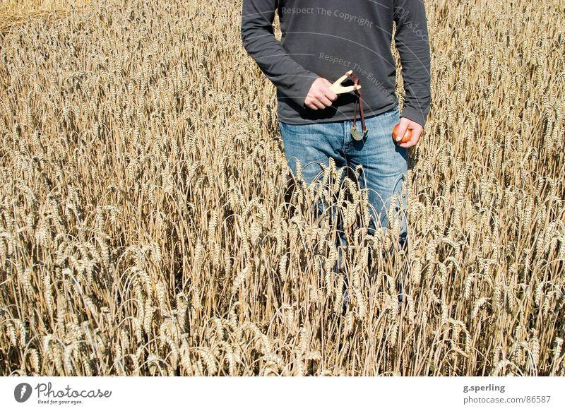 autumn fun Autumn Field Joke Wheat Joy Playing