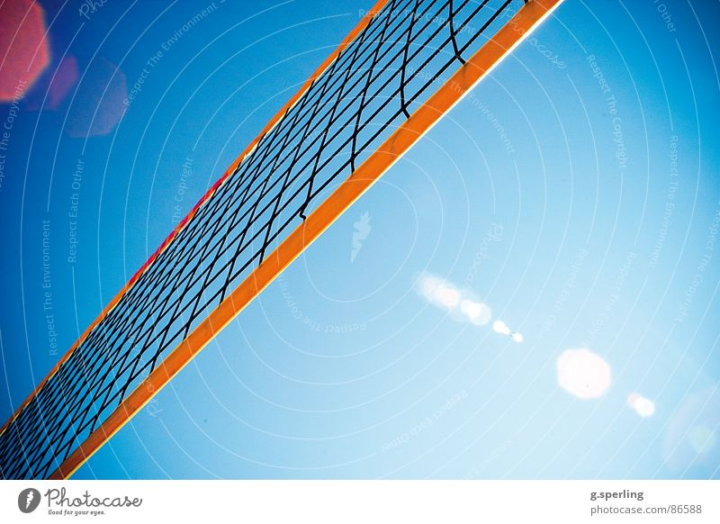 summer on the net! Summer Playing Sunbeam Patch of light Sports Martial arts Volleyball (sport) Net Sky Lens flare