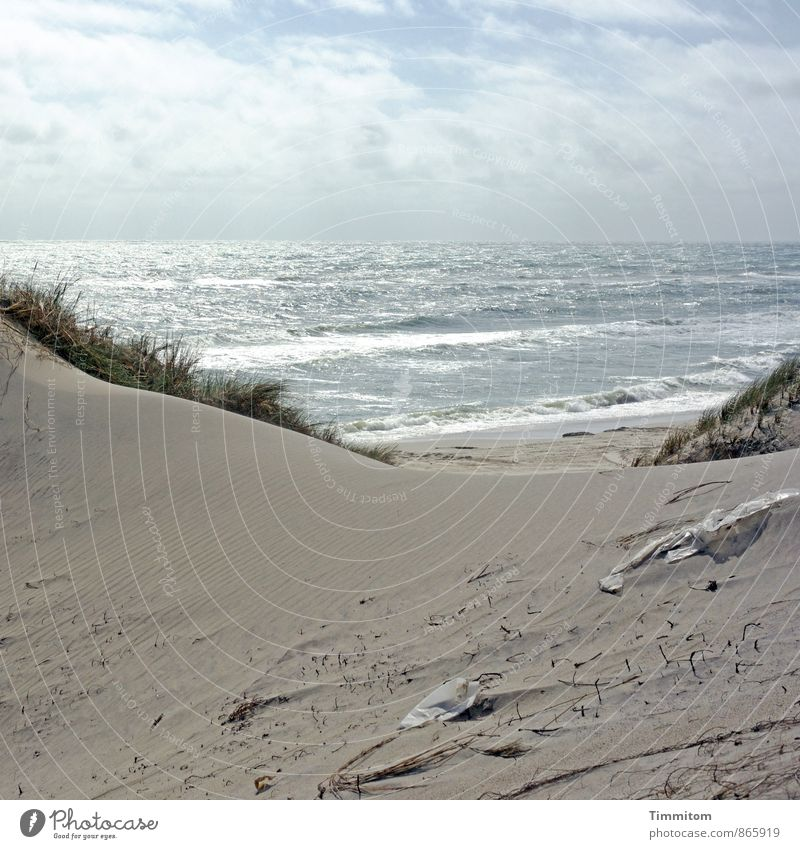 Sky Nature Vacation & Travel Blue Plant Green Water Summer Landscape Beach Environment Emotions Gray Sand Waves Esthetic