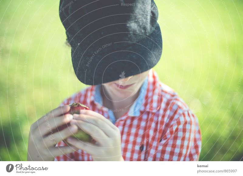 Human being Child Nature Hand Life Meadow Grass Boy (child) Eating Head Food Leisure and hobbies Masculine Infancy Cute Fingers